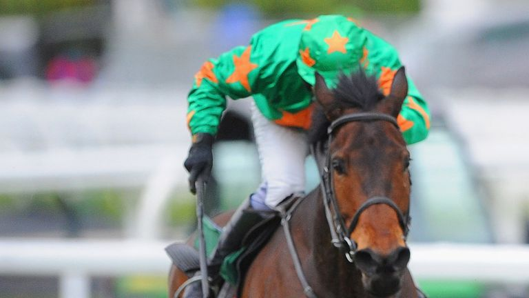 Baily Green: Set for Punchestown