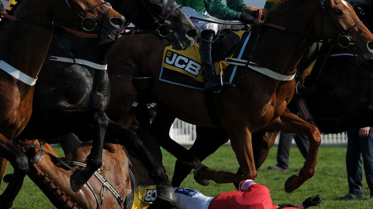Ruby Walsh was thrown to the ground
