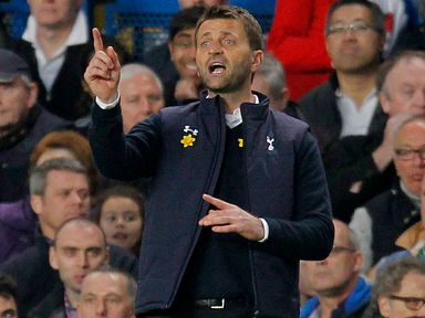 Tim Sherwood: Doesn't want to be number two