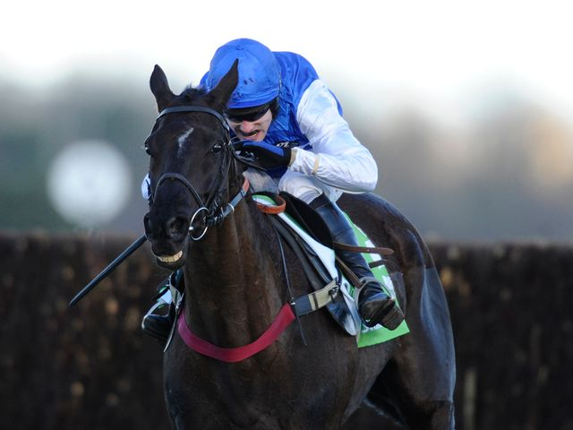 Shangani: Won at Newbury