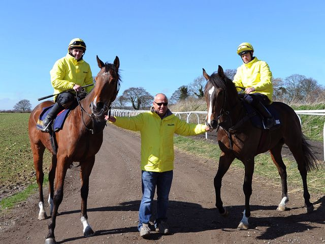 Fahey with Gabrial's Kaka (right) and Hi There (left)