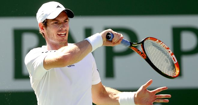 Andy Murray: The British No 1 must now decide what to do next