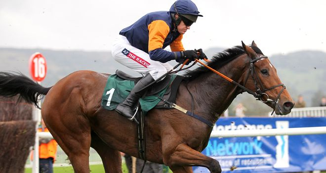 Rebel Fitz: Could run at Galway twice this summer.