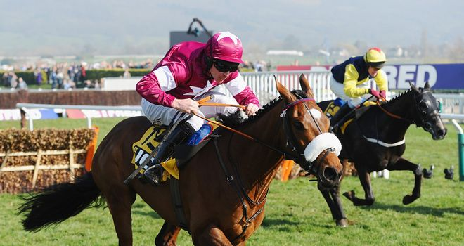 Tiger Roll: Won the Triumph Hurdle