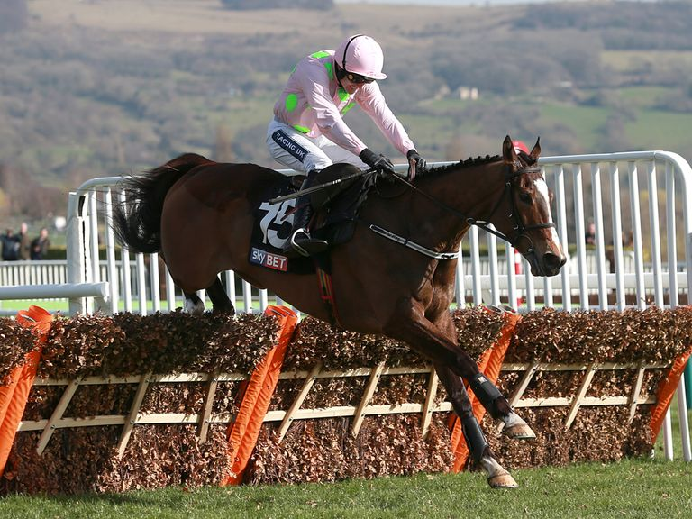 Vautour: Could be aimed at the Champion Hurdle