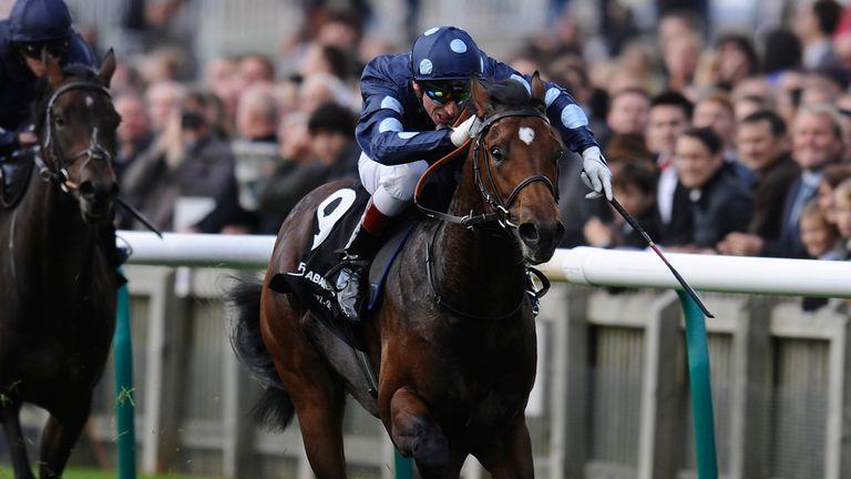 Reckless Abandon could run at York