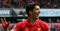 Luis Suarez: Has scored 29 league goals for Liverpool this season