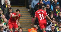 Luis Suarez: Liverpool striker scored his 30th league goal against Norwich