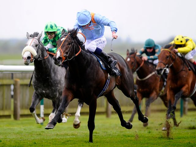 Toormore: Remains easy to back for the Guineas
