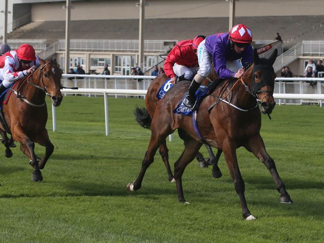 Sruthan is a ready winner of the Gladness Stakes at the Curragh