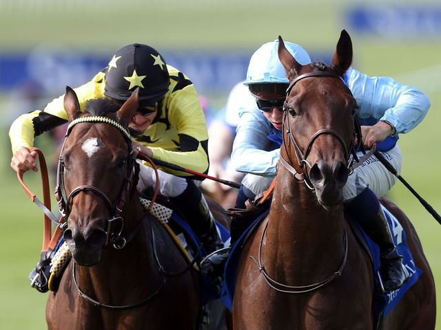 Lightning Thunder (left) aims for compensation at Royal Ascot