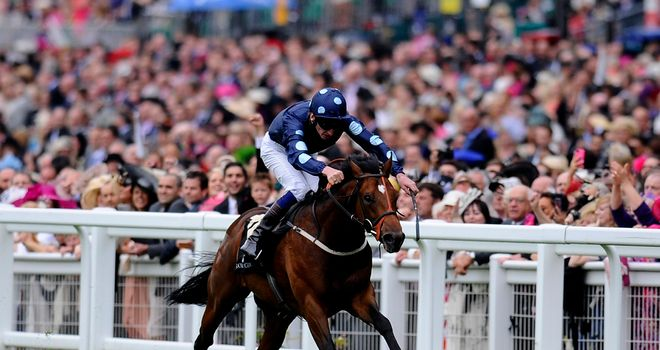 Reckless Abandon: Returns to action at Newmarket on Saturday