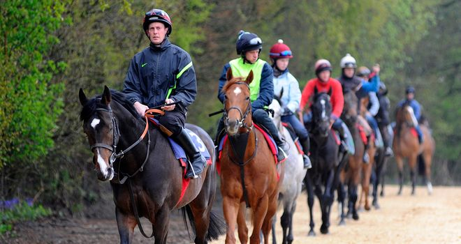 Toormore leads Richard Hannon's string to the gallops