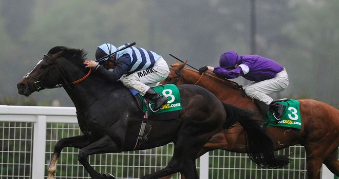 Western Hymn could only finish fourth