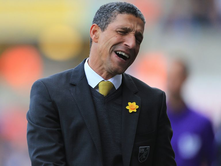 Hughton: Disappointed to be ousted from his job at Norwich