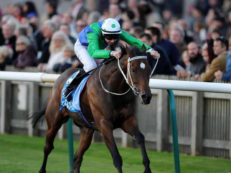 Mull Of Killough: Fancied to deliver at Newmarket