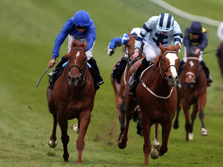 Sudden Wonder (left): Can step up at Lingfield