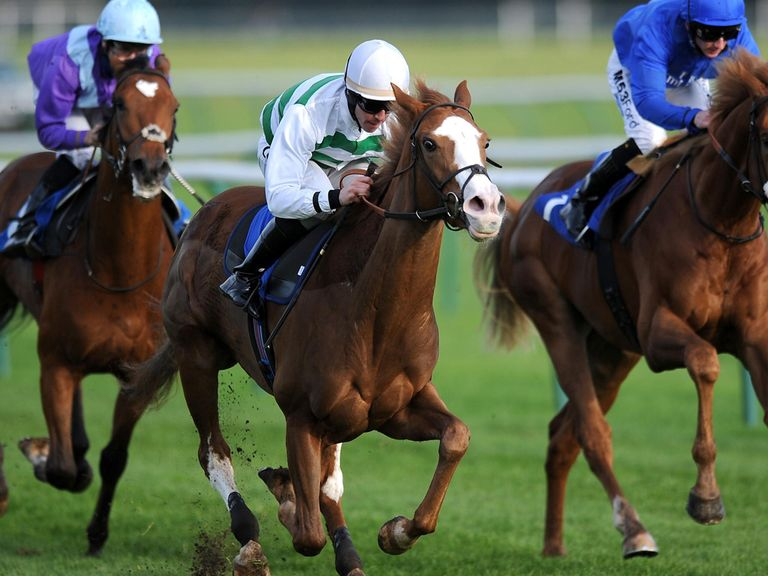 Cubanita: Can win the Yorkshire Cup for Ralph Beckett