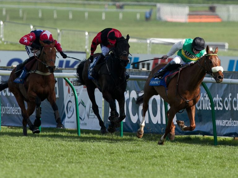 Godsmejudge (l): Can land the Gold Cup