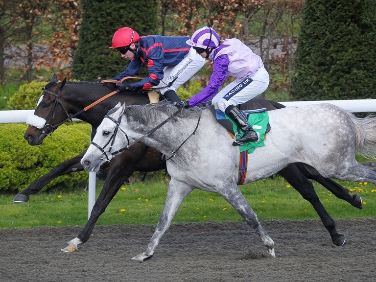 Snow Trouble (grey): Backed to win the finale at Newmarket