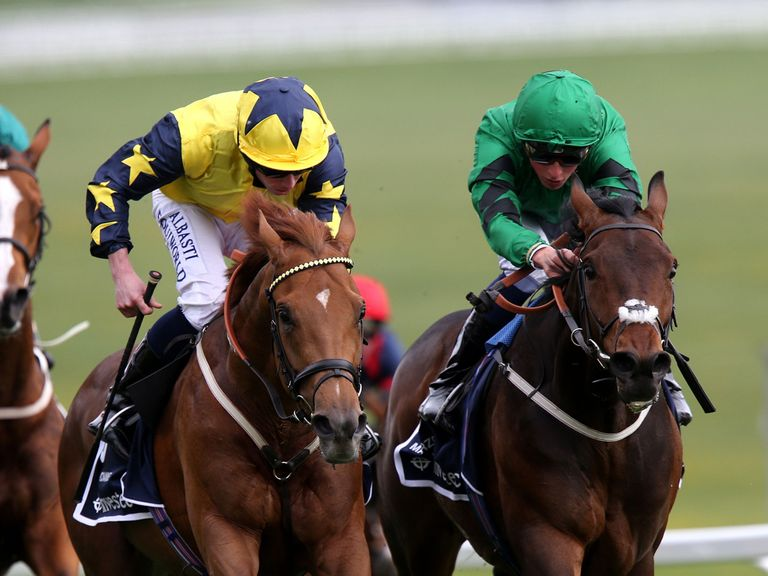 Marcozzo (right): Fancied to win at Goodwood
