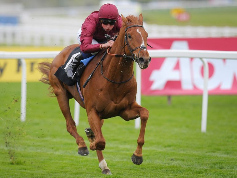 Eagle Top: Fancied to follow up his Newbury success