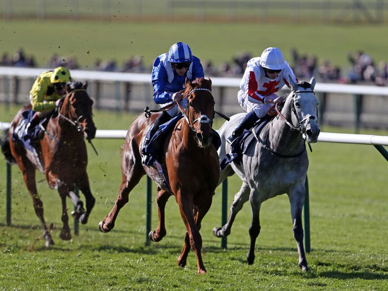 Munjaz: Catching the eye before the Lingfield Derby Trial