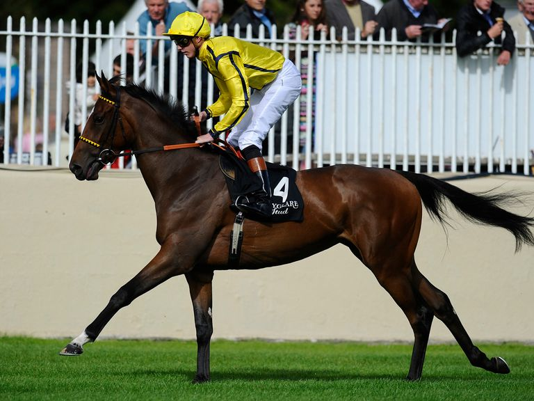 Rizeena: Could drift before the QIPCO 1000 Guineas