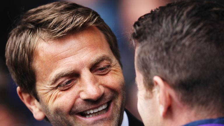 Tim Sherwood: Turned down the opportunity to return to management at West Brom