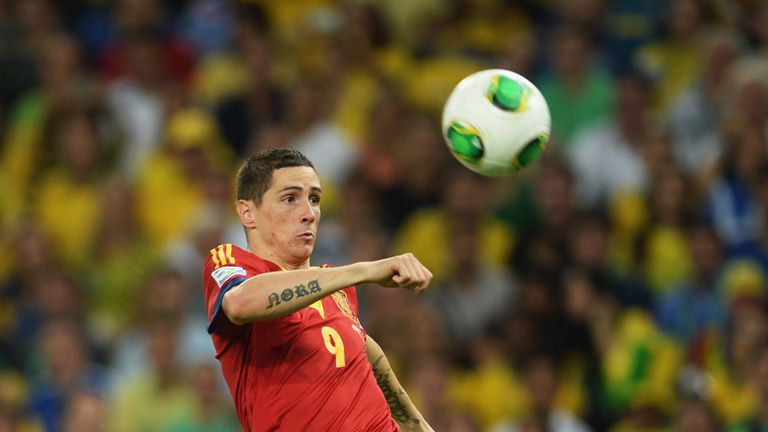 Fernando Torres: Hoping to play a part in Spain's World Cup plans