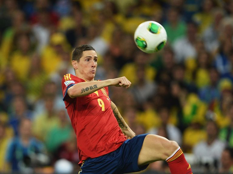 Fernando Torres: One of Spain's forwards for the World Cup in Brazil