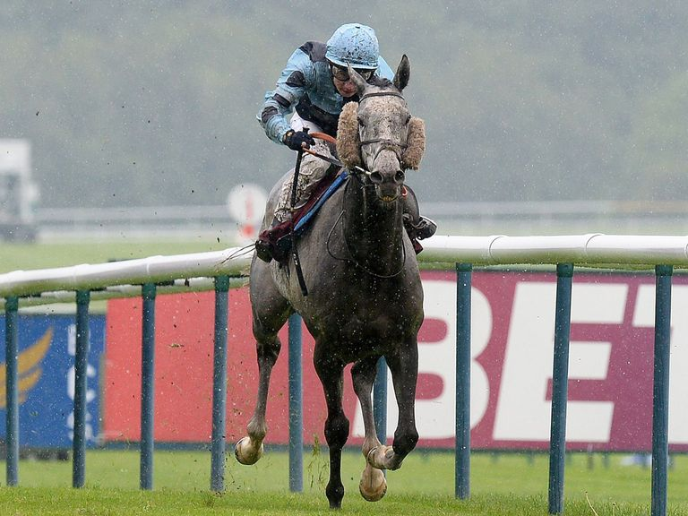 Noble Silk: Worth a bet in the Northumberland Plate