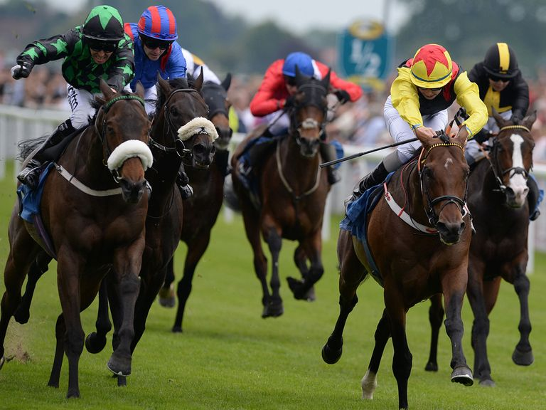 Clever Cookie (left): Can he remain unbeaten at York on Saturday?