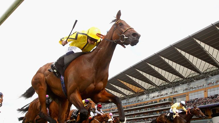 Rizeena could run in the Falmouth Stakes at Newmarket.