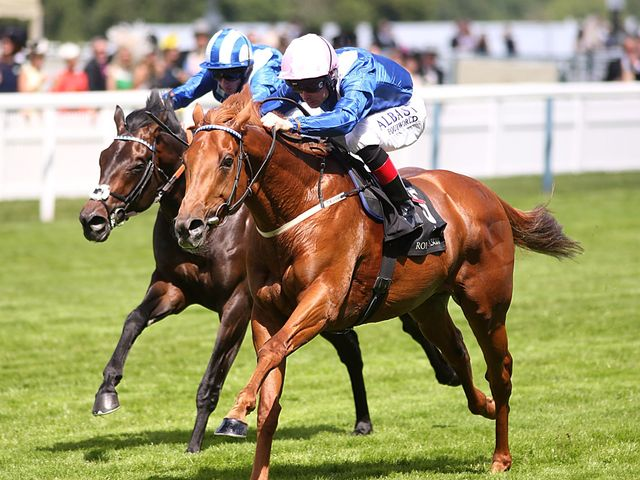 Mustajeeb and Muwaary give Hamdan Al Maktoum a Jersey Stakes one-two