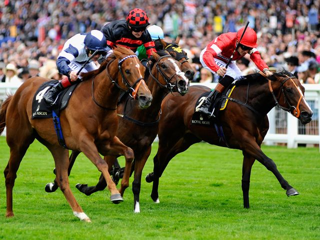 Newsletter, finishing third in the Queen Mary Stakes at Royal Ascot.