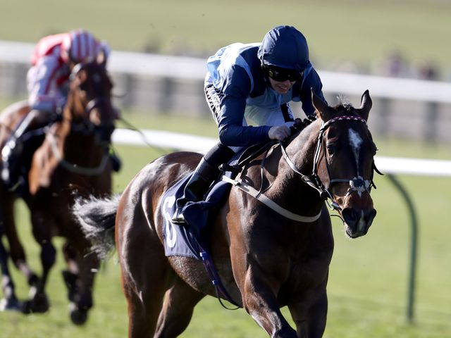 Danzeno: York hopeful