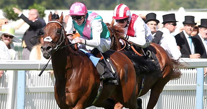 Kingman is one of the star names engaged in the Sussex Stakes