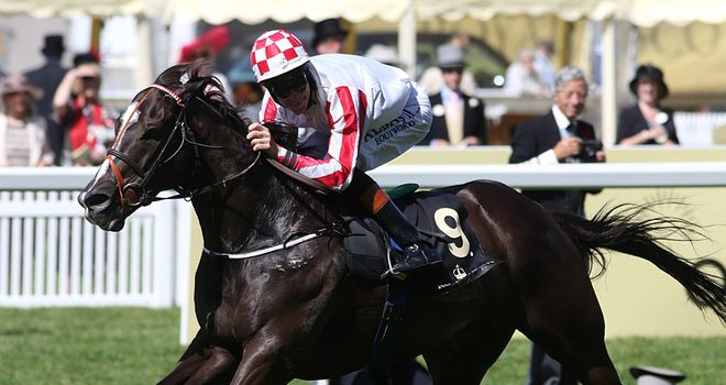 Sole Power: Heads maximum field for Haydock feature