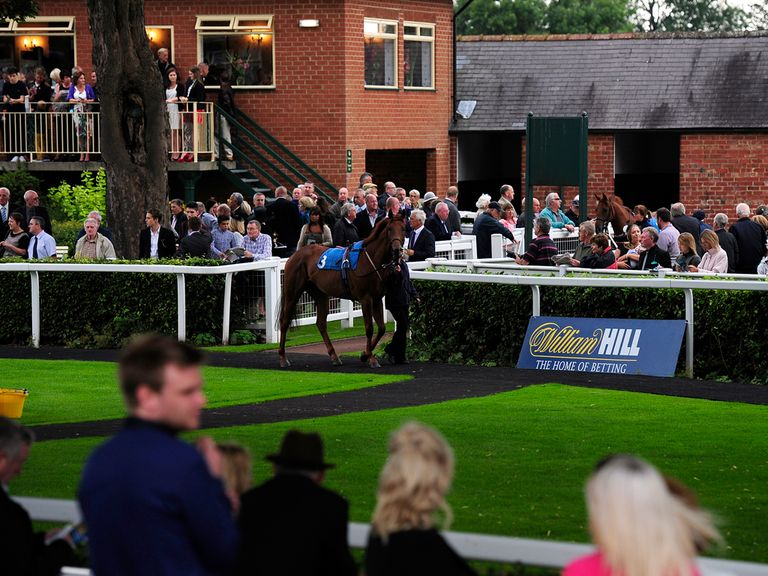 Magnificent Seven tipsters found three winners between them at Ripon