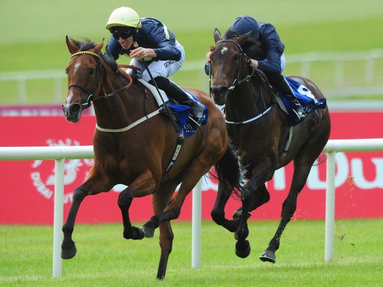 Thistle Bird: Produced a career-best effort to win the Pretty Polly Stakes