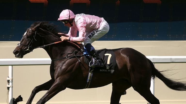 The Fugue has been retired after sustaining an injury at Sandown