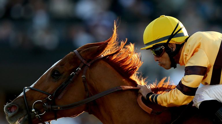 Wise Dan is recovering following a bout of colic