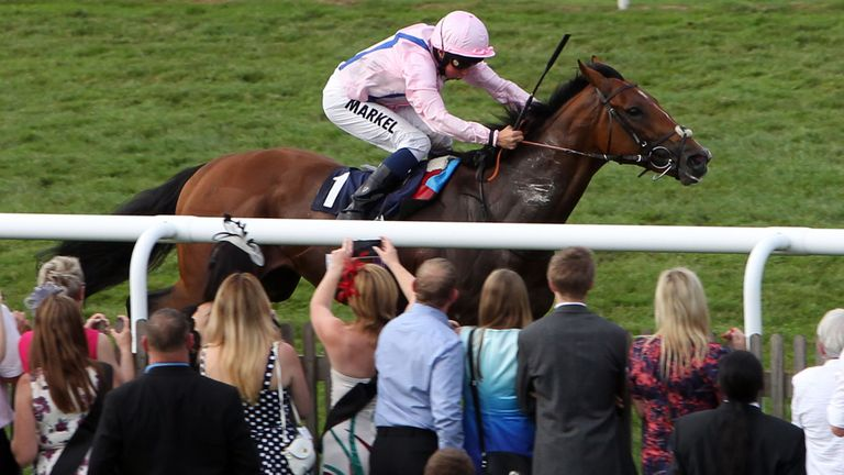 Glorious Protector could head to the Ebor
