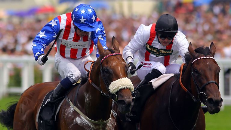 American Hope: Can make up for narrow defeat last time at York