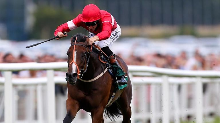 Richard Hannon is in no rush to confirm Tiggy Wiggy for the Nunthorpe Stakes at York.