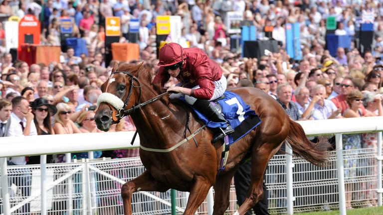 Flaming Spear: Set to run in the LLP Acomb Stakes