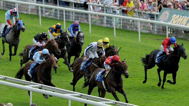 G Force (blue) could return to the Knavesmire
