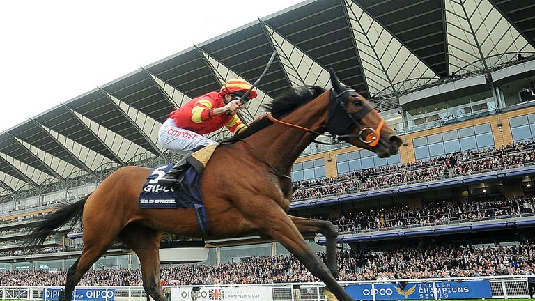 Seal Of Approval wins at Ascot last year.