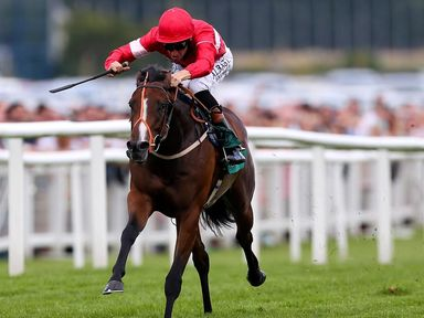 NEWBURY, ENGLAND - JULY 19: Richard Hughes riding Tiggy Wiggy breaks clear to win The Weatherbys Super Sprint at Newbury Racecourse on July 19, 2014 in New